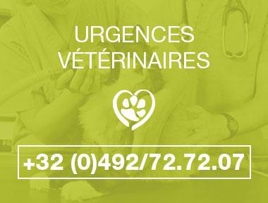 urgence-veterinaire-animavet-mons-hover