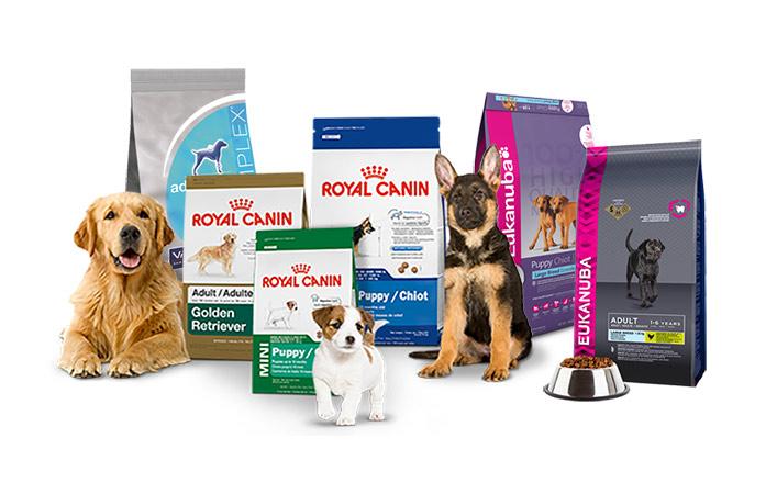 alimentation chien animavet croquettes pour chien